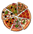Set of various pizza pieces isolated on white vector image