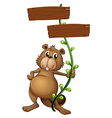 A beaver holding a vine plant with signboards vector image vector image