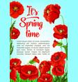 poster of spring tiem poppy flowers vector image