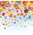 Beautiful autum leaves against sky EPS 8 vector image