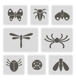 monochrome icons with various insects vector image