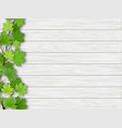 maple tree branch on wooden background vector image