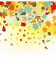 Colorful backround of fallen autumn leaves EPS 8 vector image