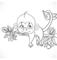 Cute monkey lazily lying on a branch and holds the vector image