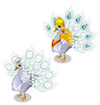 white peacock in precious royal garment vector image