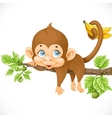 cute monkey lazily lying on a branch and holds the vector image vector image