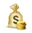 Moneybag and coins vector image vector image