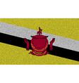 Flags Brunei on denim texture vector image