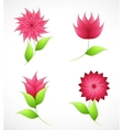 Nature flowers for design vector image vector image