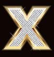 x bling bling vector image