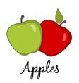 Apples Drawings vector image