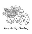 Raccoon sugar Mexican skulls vector image