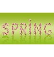Spring word sakura tree Japanese cherry blossom vector image vector image