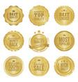 golden metal best choice premium quality badges vector image