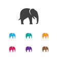of zoo symbol on elephant icon vector image