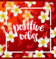 hand drawn calligraphy positive vibes vector image