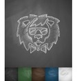 hipster lion icon Hand drawn vector image