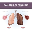 Lungs and alveoli of a healthy person smoker vector image