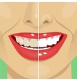 Perfect smile before and after bleaching vector image