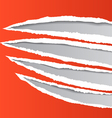 Traces of an animal claws on paper vector image