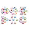 Collection of hexagon colorful infographics Design vector image