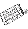 Firecracker vector image