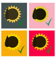 set of flat sunflowers and seeds symbol isolated vector image