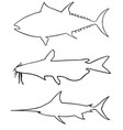 set of different big fish silhouettes vector image