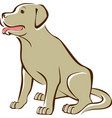 golden retriever outline drawing vector image vector image