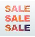 Colorful Sale Labels Set vector image