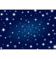 Beautiful night star vector image