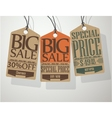Vintage Style Sale Tags vector image