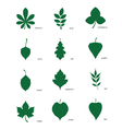 Set of silhouettes of leaves of different trees vector image