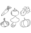Doodle designs of different vegetables vector image vector image