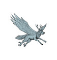 peryton flying side drawing vector image