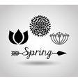 spring season design vector image