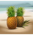 pineapples on seaside vector image vector image