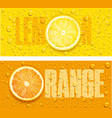 lemon and orange juice background with water drops vector image