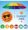 set with summer design elements vector image