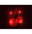 Sweet cherries isolated on black background vector image