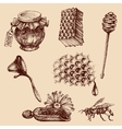 Honey and apiculture set Bee icons collection vector image vector image