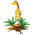 A giraffe standing above a chopped wood vector image vector image