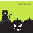 Black cat and Halloween pumpkin vector image