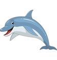Funny dolphin fun vector image