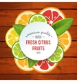 Banner with stylized citrus fruit and splashes vector image