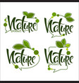 nature handdrawn lettering and doodle organic vector image