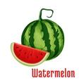 Watermelon fruit icon vector image vector image