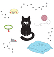 Cats accessories vector image