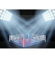 night boxing prize ring vector image