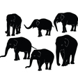 elephants collection - vector image